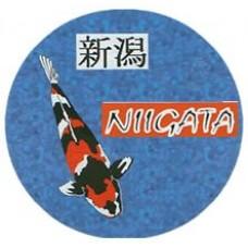 Niigata Fish Food