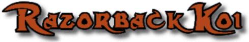 Razorbackkoi.com